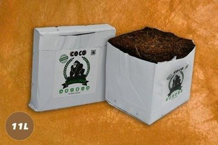 Gorilla Grow Cocos block 11L
