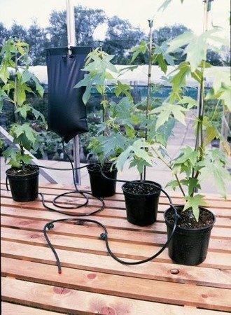 System nawadniający Big Drippa 8 roślin